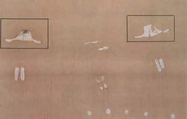 29,000 year old cave painting from Itolo Tanzania showing UFOs