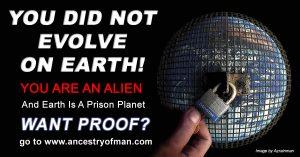 Human Origin Ancestry Of Man Prison Planet