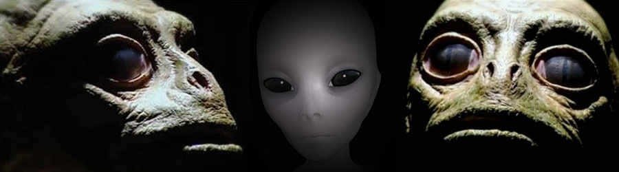 Gray And Reptilian Aliens Have Visited Earth For Thousands Of Years